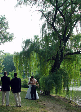 Wedding couple celebrating near Boathouse and the pond