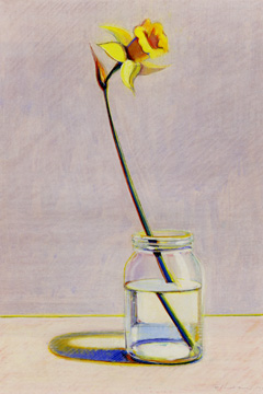 """Daffodil"" by Thiebaud"