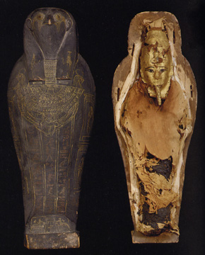 Egyptian falcon mummy and sacrophagus