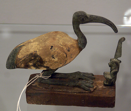 Egyptian Ibis and Maat