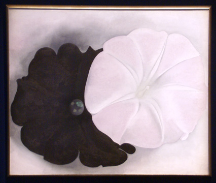 """Black Petunia and White Morning Glory I"" by O'Keeffe"